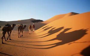 2-pred-6-000-godini-dozhdovno-podrachje-a-denes-suva-pustina-shto-navistina-se-sluchilo-so-sahara