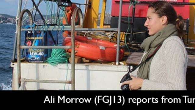 Fellowships-on-Specialized-Reporting.jpg