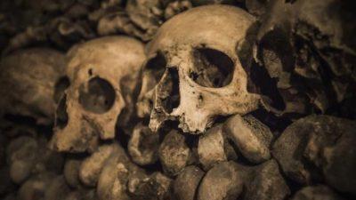 Во Русија пронајден нацистички сандак и череп од непознато суштество!?