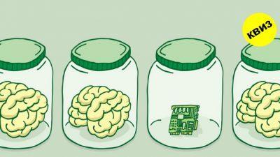 Најкраткиот тест за интелигенција од 3 прашања