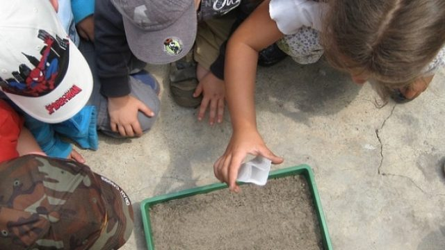 EVS-in-Italy-in-Environmental-Education.jpg