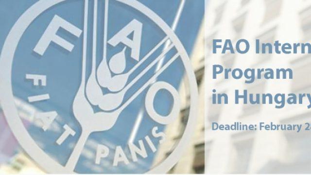 FAO-Internship-Programme-Hungary.jpg