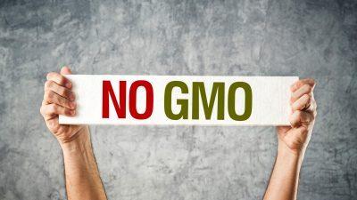 ЕУ забранува одгледување на 3 вида ГМО