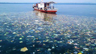 Четириесет компании апелираат за намалување на загадувањето на океаните со пластика
