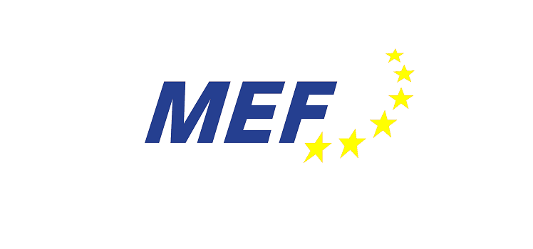 The-Brussels-European-Forum-2017.png