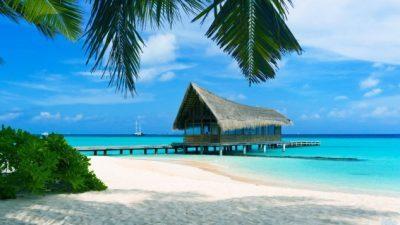 Можност за работа на Бахамите