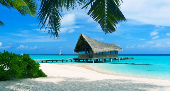 bahami.jpg