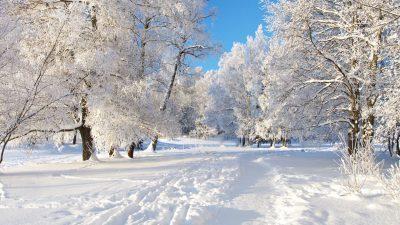 Во јануари годинава измерена најниската температура досега – 28 степени