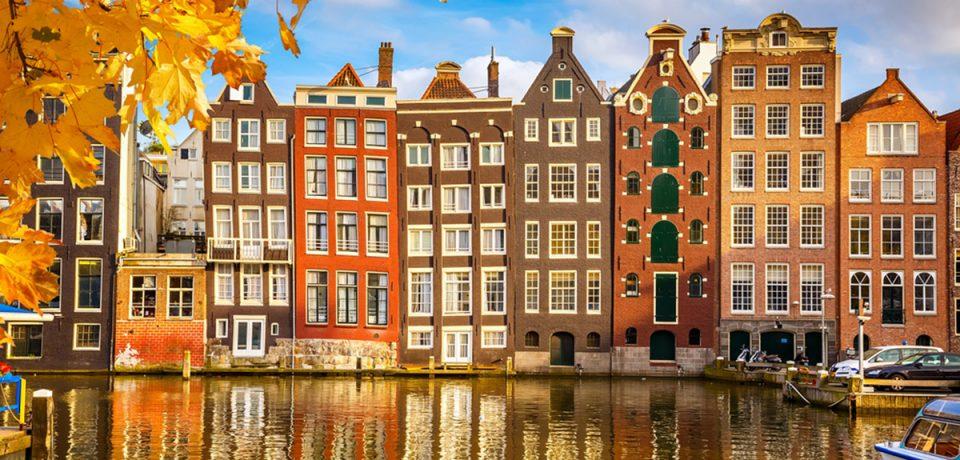 Netherlands-Fellowship-Programme.jpg