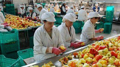 Најмногу слободни работни места во прехранбената индустрија