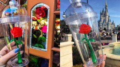 Луѓе чекаат во редици за ова пластична чаша со роза