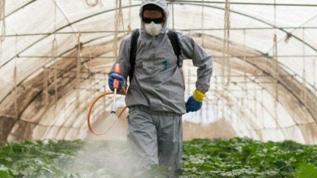 pesticiddddd.jpg
