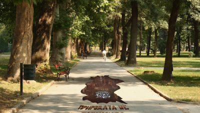 """Универзитети и училишта со креативни проекти ќе учествуваат на """"Скопје креатива 2017"""""""