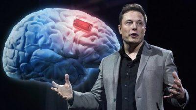 Илон Маск: За 4 години отсега човечките мозоци ќе може да се поврзат со компјутери