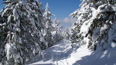 Утре подгответе се за снег во Македонија !