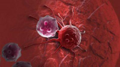 Научниците се на пат да најдат начин да спречат раст на тумори
