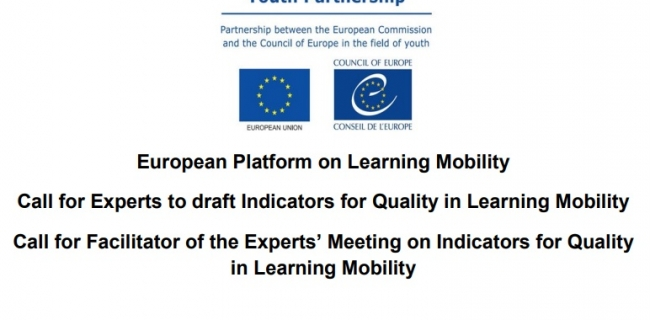 Call-for-Experts-and-a-Facilitator-on-Learning-Mobility.jpg