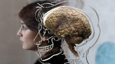 Кој е првиот симптом на Алцхајмерова болест?