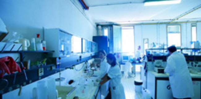 PhD-Scholarships-at-University-of-Trieste-s-Department-of-Physic.jpg