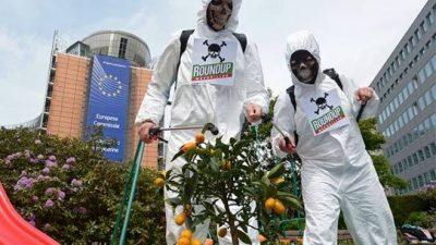 Милион Европјани, испратија порака до ЕУ – Морате да ги забраните смртоносните производи на Монсанто