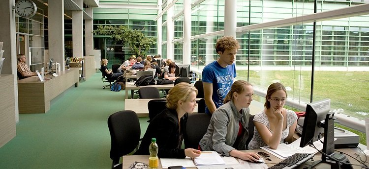 Master-in-Business-Administration-the-Netherlands-School-for-Innovative-Education.jpg