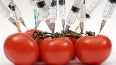 ГМО хемикалии во крвта имаат жители на 18 европски земји – Македонија конечно е на дното на листата по нешто добро