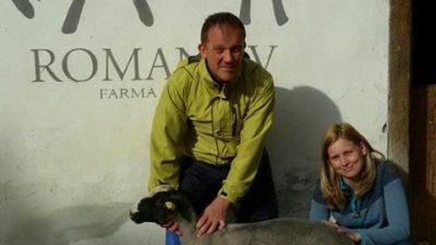 Татјана и Бојан ја оставиле работата во Холандија и дошле да чуваат овци