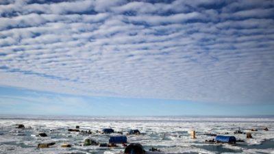 Руски микророботи кои можат да работат под мразот на Арктик
