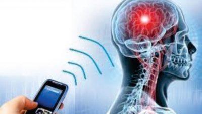 Според научниците зрачењето на мобилните предизвикува ДНК промени