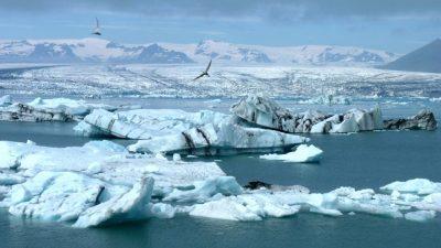 """Арктикот станува """"гасна комора"""""""