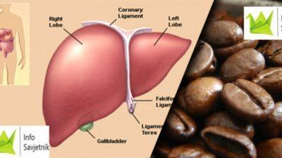 Еве што два филџана кафе му прават на вашиот црн дроб