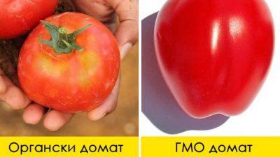 3 едноставни начини како да препознаете дали храната е ГМО или органска