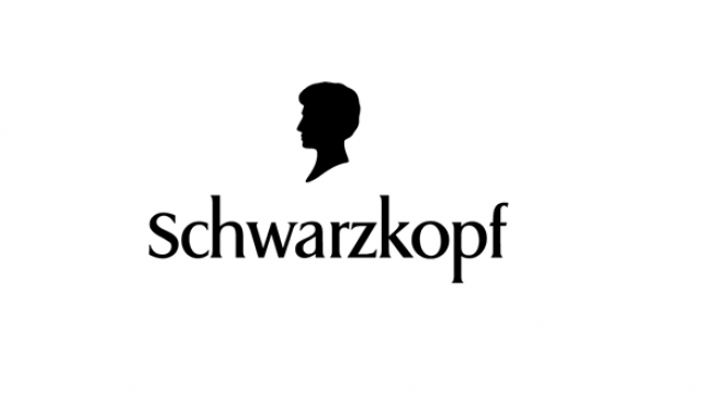Internship-in-Schwarzkopf-Professional-Project-Management-for-Social-Initiative-and-Sustainability.png