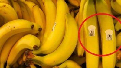 ВАЖНО ПРЕДУПРЕДУВАЊЕ: Воопшто не купувајте банани со ова етикета!
