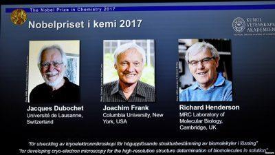Ова се  добитниците на Нобелова награда за хемија