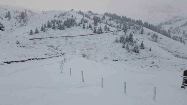 sneg2.jpg