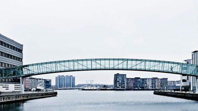 Social-Sciences-PhD-Scholarship-for-International-Students-in-Denmark.jpg