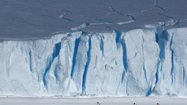 antartik.jpeg