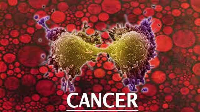 kancer.jpg
