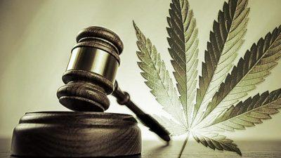 """Научна расправа на тема """"Легализација на канабис, да или не?"""" ќе се одржи на Правниот факултет """"Јустинијан Први"""""""
