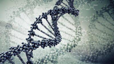 Откриен ген кој предизвикува забрзано стареење кај деца