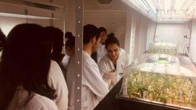 Студенти од Фармацевтскиот факултет во посета на фабриката за производство на масло од канабис НЈСК ХОЛДИНГ