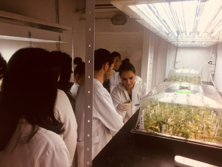Studenti-od-Farmacevtskiot-fakultet-vo-poseta-na-NYSK-2.jpg