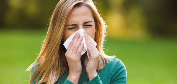 alergija-702x336.jpg