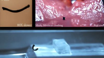 Минималистички робот иднина на неинвазивната медицина