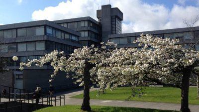 Докторски стипендии за студенти од земји во (и надвор од) ЕУ во Ирска