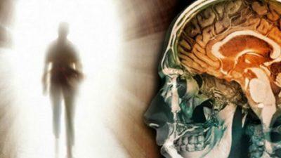 Што му се случува на мозокот за време на смртта?