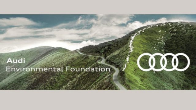 Audi-Environmental-Foundation-Scholarship-in-Netherlands.jpg