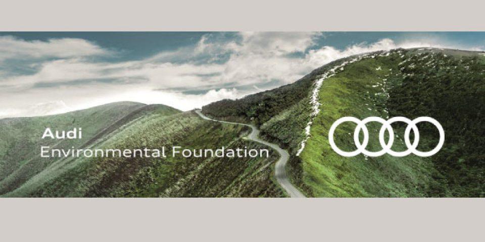 Audi-Environmental-Foundation-Scholarship-in-Netherlands.jpg