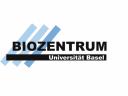 Меѓународна програма за докторски стипендии во …